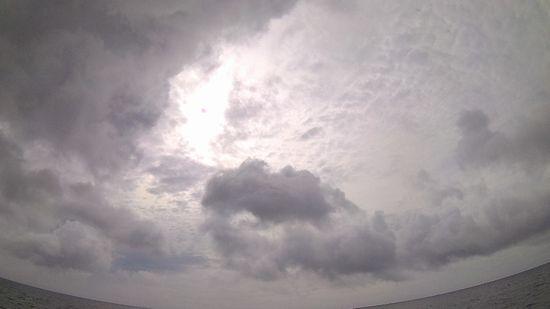 曇りの一日!涼しくて快適です