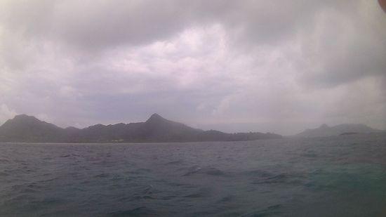 曇のち土砂降りの大雨です。
