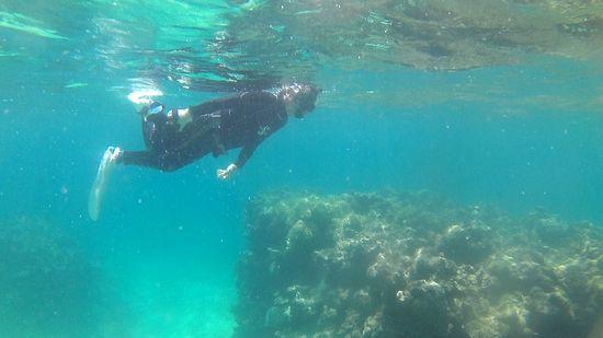 H埜さんは被写体を探して泳いでいます