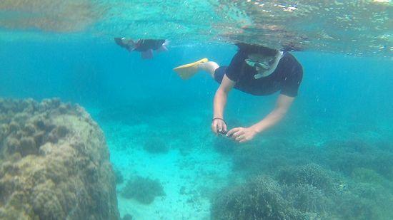 水中写真を楽しむお父さんです