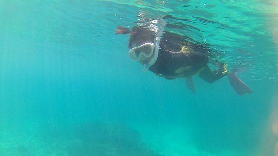 アヤカちゃん、とっても慣れた泳ぎです