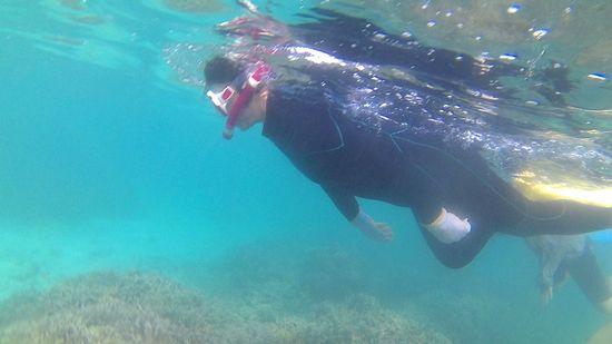 お母さんも水中を楽しんでいます。