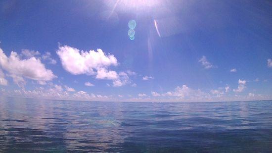 本日快晴、穏やかな海となりました