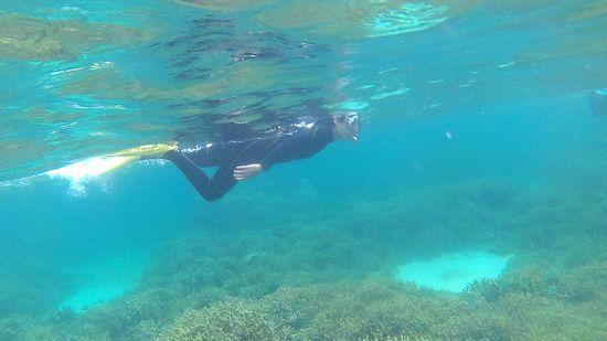水中世界を楽しんでいるT岡奥さん
