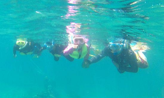 すぐに泳ぎ始める皆さんです。