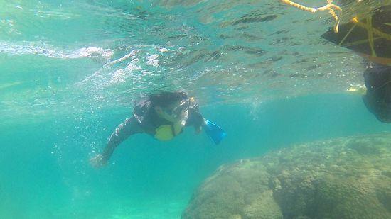 お父さんも水中世界に没頭です