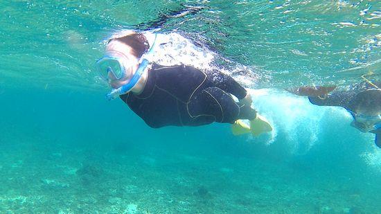 M国さん、超特急で泳ぎ回っています。