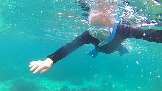 水中を楽しんでいらっしゃいます