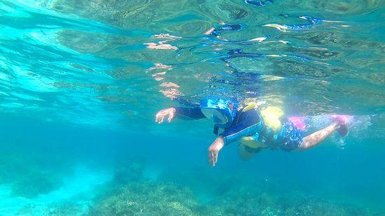 お兄ちゃん、恐る恐る泳ぎ初めていまう。