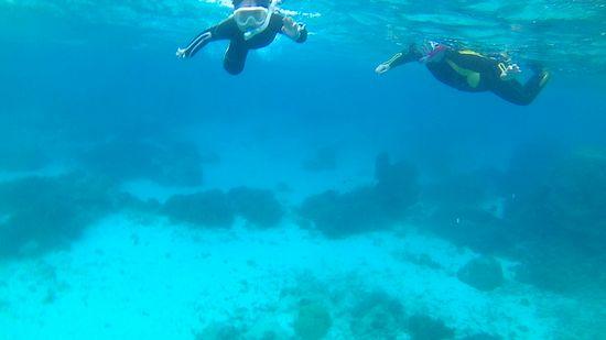 水中世界を楽しんでいます