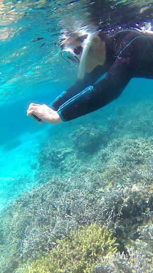 水中カメラを楽しむお父さん