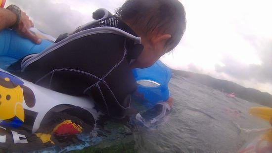コウヘイ君、水中世界に没頭です。