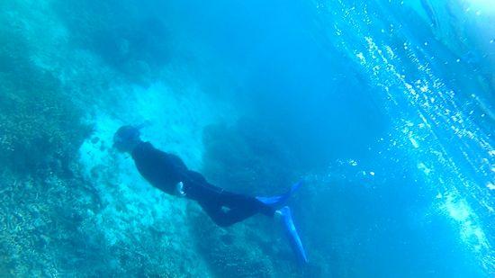 素潜りドボンで海を楽しむ旦那さんです