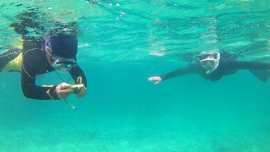 ユウジン君とお母さん、すいすい泳いでいます。