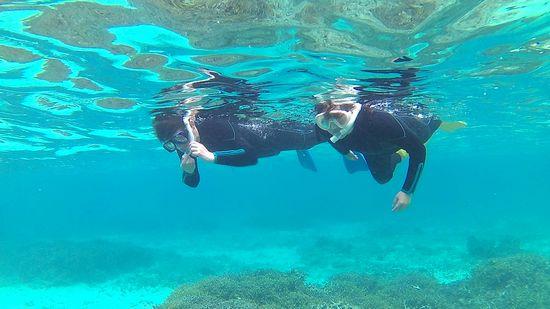 楽勝の泳ぎのお父さんとお母さんです。