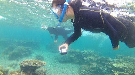 水中写真を撮りながら泳ぐA本さん
