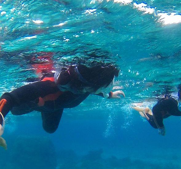 お母さんも最後は、水中を楽しんでいます。