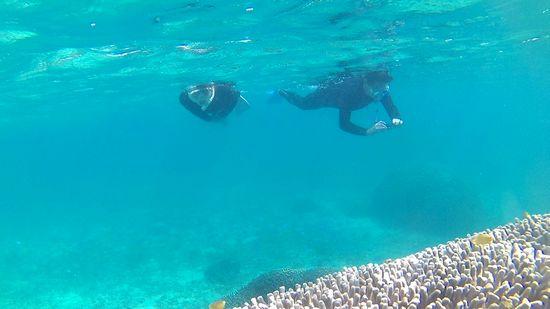 サンゴとお魚さんを楽しんでいるK斐さんとTさん