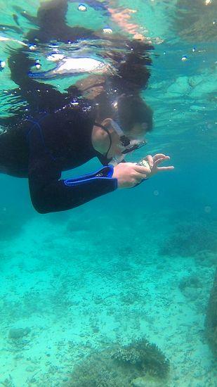 水中カメラを楽しむ旦那さん