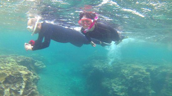 サンゴをたのしんでいるT岡さんご夫婦