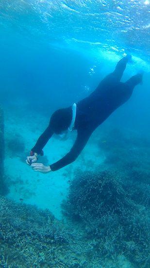 素潜りで水中写真