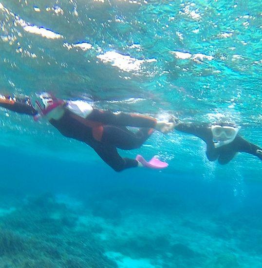 お母さんとタマキちゃん、一緒に泳いでいます