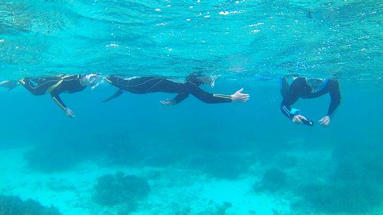 余裕の泳ぎで楽しんでいる三人です。