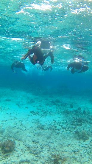 家族そろって、水中遊泳