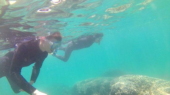 Y根さんとBさん、余裕の泳ぎを楽しんでいます。