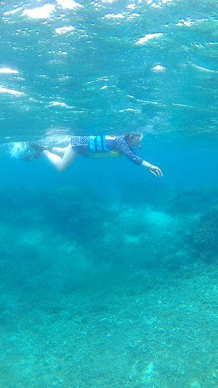 お母さんは相変わらずハードに泳いでいます