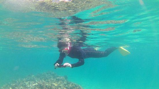 水中カメラに没頭のT松さん