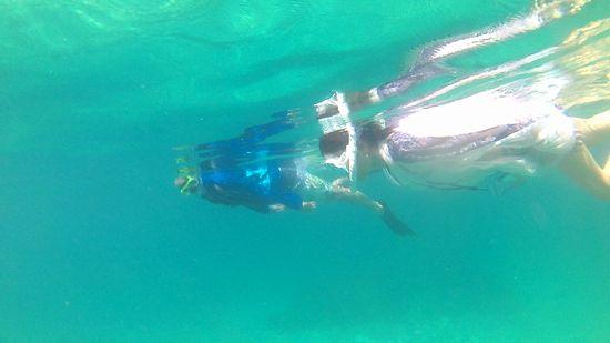 まるでプールのような水面を泳いでいきます
