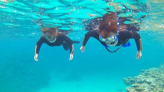 余裕の泳ぎのお二人です。