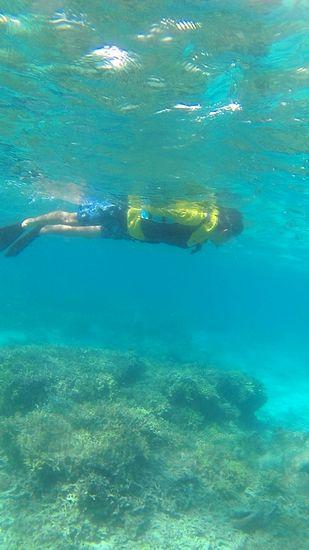 Sさん、のんびり水中世界を満喫です