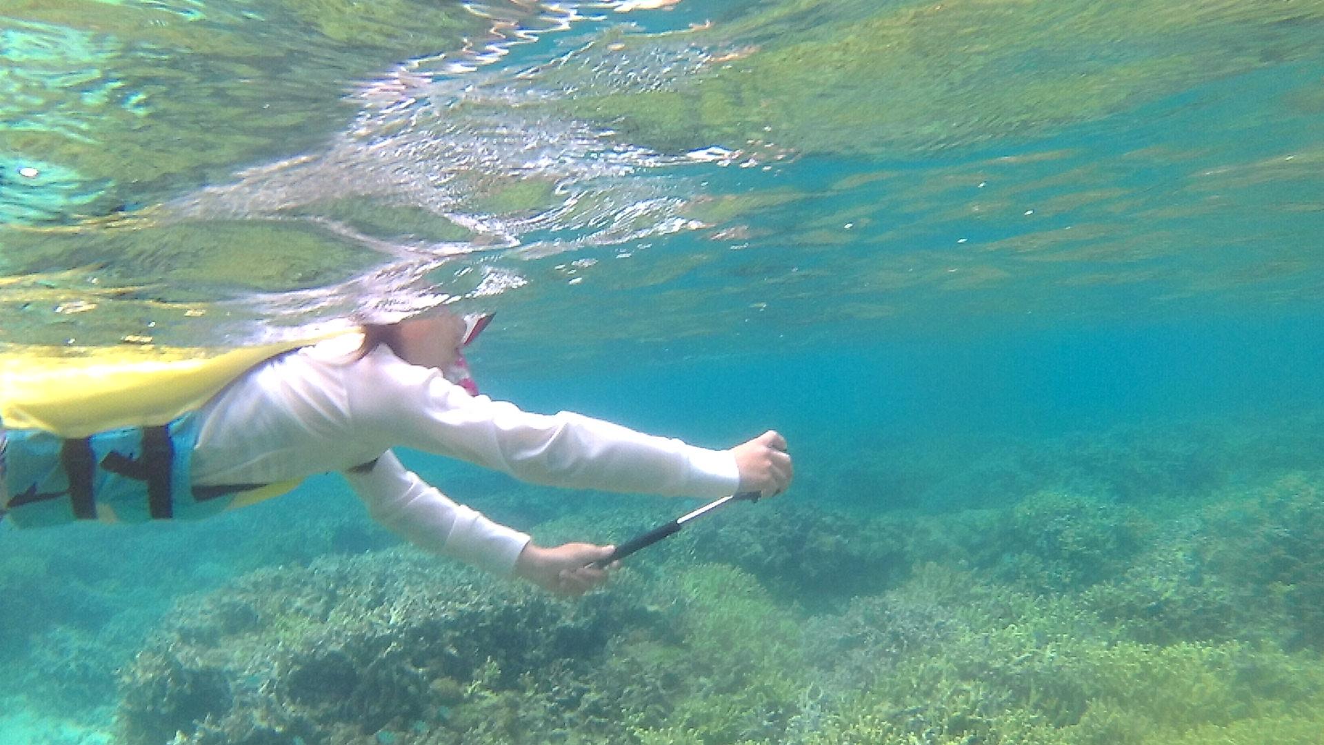 お母さん、水中世界を満喫中です