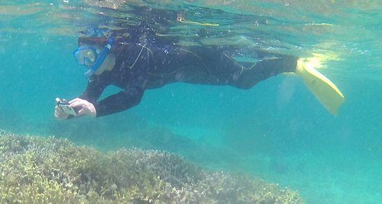 お母さんは水中カメラで撮影を楽しんでいます。