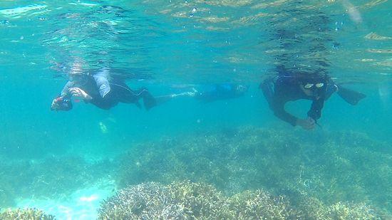 すいすい泳いで撮影を楽しむS木さんご夫婦