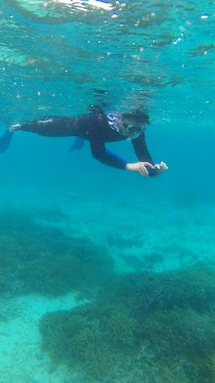 お父さんは水中カメラで撮影です
