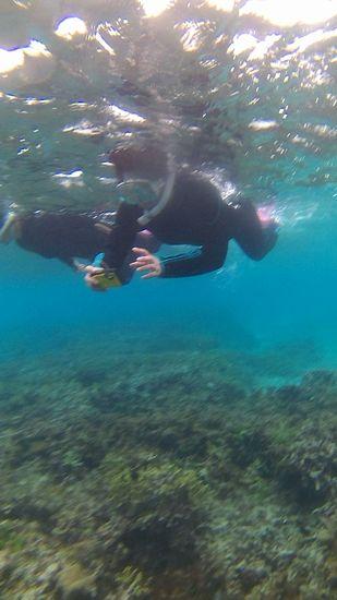 水中カメラを楽しむN澤さん