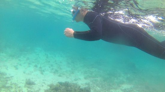 お父さん余裕の泳ぎで楽しんでいます。