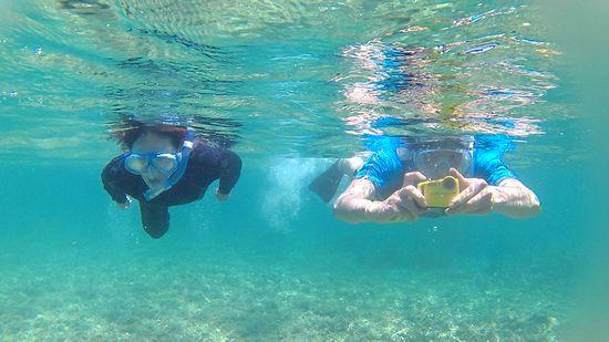 お父さんお母さんは楽勝の泳ぎです。