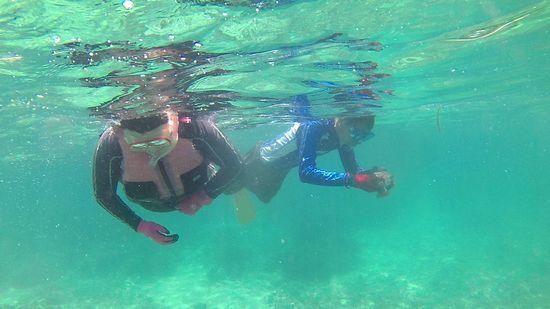 K川さんご夫婦、すいすい泳ぎ回っています