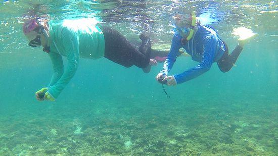水中カメラに没頭のM浦さんとS籐さんです。