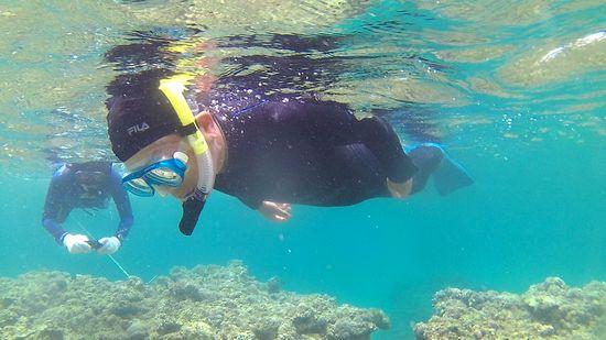I田さんは、もくもくと泳いでいます