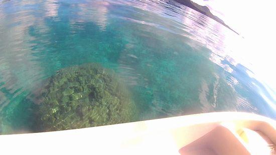 今日もプールみたいな水面です