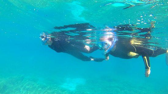 余裕の泳ぎですーいすいです