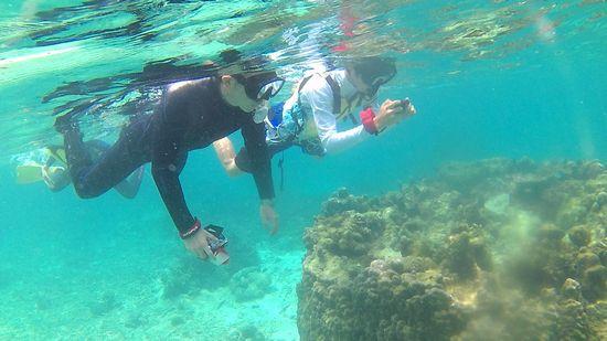 水中カメラを構えるお父さんとお兄さん