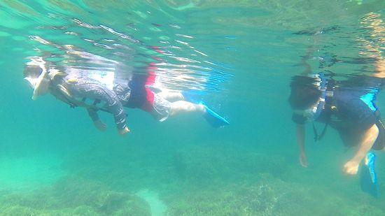お父さんとお兄さんもすいすい泳いでいます