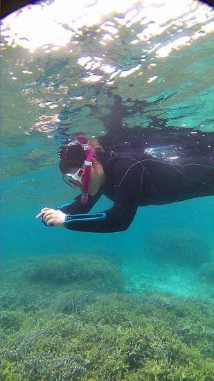 慣れてくると水中撮影