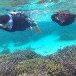 お父さん、お母さんは、サンゴを満喫です。